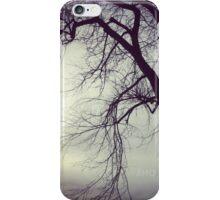 Santa Fe Tree iPhone Case/Skin