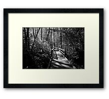 Path of Light and Life Framed Print
