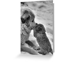Double Paw Kiss Greeting Card