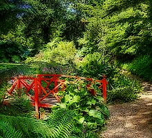 The Little Red Bridge by John Edwards