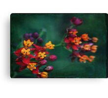 The World of Tiny Flowers Canvas Print