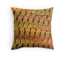 Pheasant Tail Feathers Throw Pillow