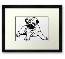 Cute Pug Framed Print
