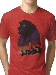 The Pride Tri-blend T-Shirt