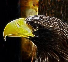 regal bird by Cheryl Dunning