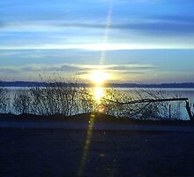 SENECA LAKE - SUNRISE 2006 by drawbabypix
