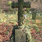 Rustic Cross by Andrew  Wakelin