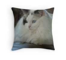 Waiting for the man of the house Throw Pillow
