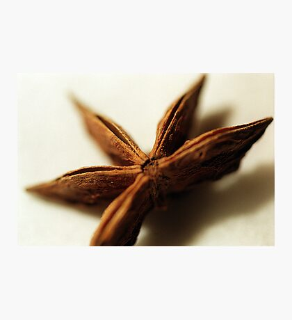 Star Anise Photographic Print