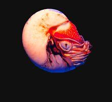 Nautilus Squid Pullover