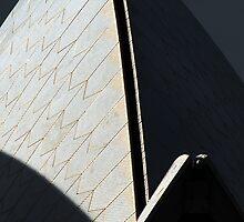 Opera House Sails by steviebuk