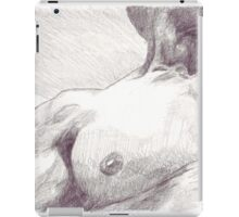 Dan iPad Case/Skin