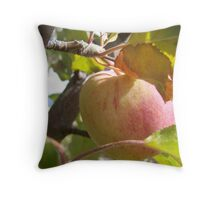 Fall Apple... Throw Pillow