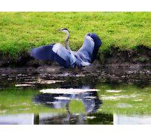 THE BLUE HERON - ORTON EFFECT Photographic Print