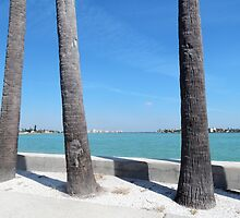 Three Palm Trees by Kathleen Brant