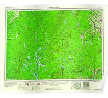 Maine USGS Historical Map Presque Isle 807064 1960 250000 Poster