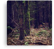 { earth & wood } Canvas Print