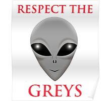 RESPECT THE GREYS Poster