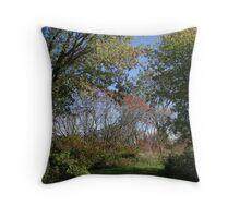 Fairytale Landscape Throw Pillow