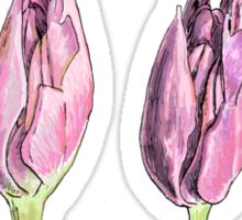 Collected Study of a Cut Tulip Sticker