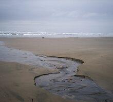 Tidal Stream by driftweird