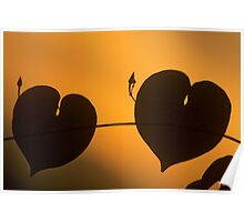 Two hearts together forever Poster