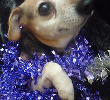Purple Tinsel Dog by karenuk1969