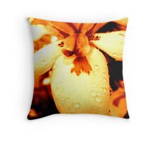 Scented Sepia Throw Pillow