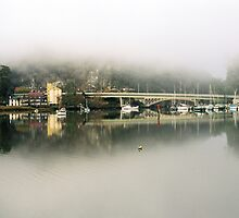 Tamar Basin Mist by David Henderson
