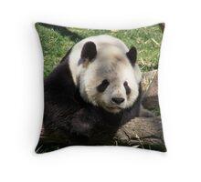 Tai Shan Throw Pillow