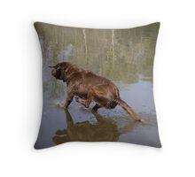 Water Dog Training Throw Pillow