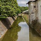 The Moat, Chateau de Chenoncau, Brittany, France by Elaine Teague