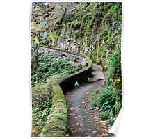 Mossy Trail Poster