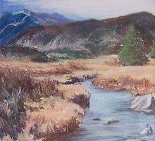 Colorado River by Carolyn Bishop