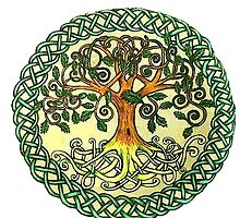 Celtic Tree of Life by Skye Tranter