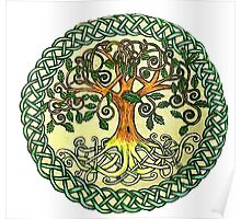 Celtic Tree of Life Poster