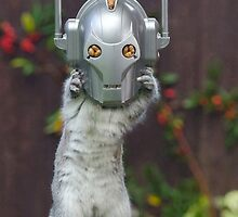 Cyber Squirrel! Be FURRY afraid Doctor Who! by ChrisBalcombe
