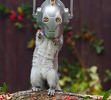 Cyber Squirrel! Be FURRY afraid Doctor Who by ChrisBalcombe