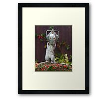 Cyber Squirrel! Be FURRY afraid Doctor Who Framed Print
