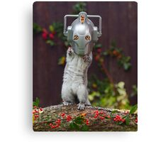 Cyber Squirrel! Be FURRY afraid Doctor Who Canvas Print