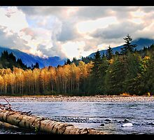 Vedder River, Chilliwack BC Canada by bluejay