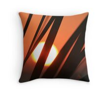 Blazing Sunset and Grasses Throw Pillow