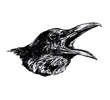Crow asking Photographic Print