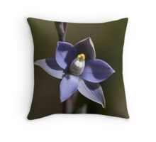 Scented Sun-Orchid Throw Pillow
