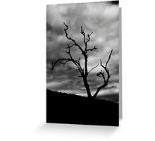 Lone Ghost Tree Greeting Card