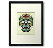 All-seeing skull Framed Print