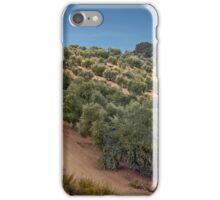 Road Through The Grove iPhone Case/Skin