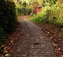Cobbled Bridleway. by mariarty