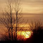 Glorious Sunset in Ohio by Laurel Talabere