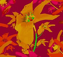 Tropical Hawaiian Style Lilies Collage by DFLC Prints
